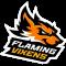 Flaming Vixens